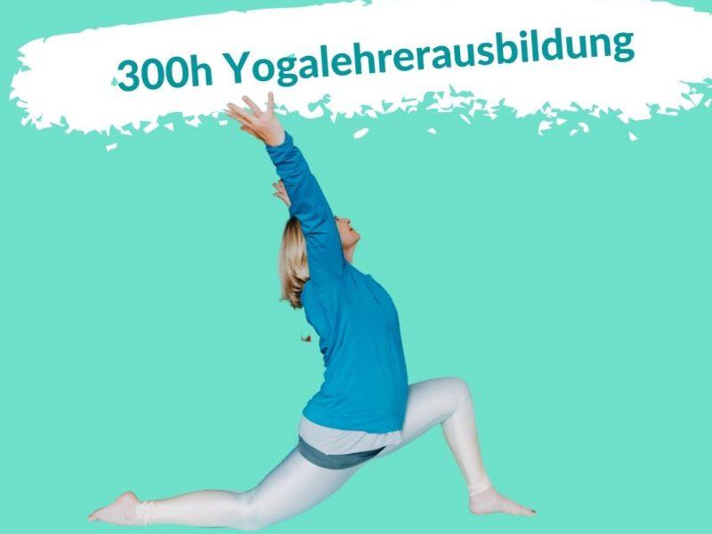 Gehe deinen nächsten Schritt: Die Yogalehreraufbauausbildung!